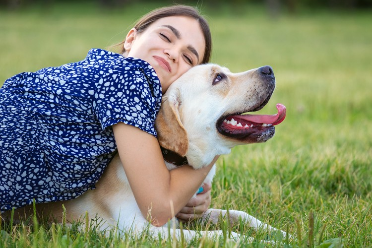 Should you insure your dog? Find out why it's worthwhile.